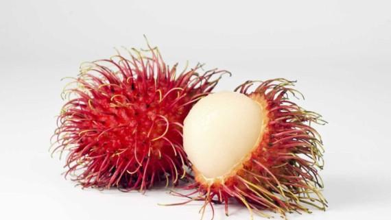 grupo dispersa fruta nacional rh grupodispersa com gt fruta nacional de jamaica fruta nacional de la india